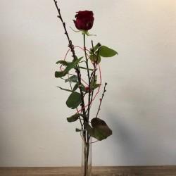 Rosegruß